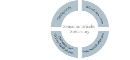 Sensomotorische Einlagen und Steuerung